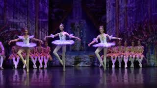 Детский балет 'Спящая Красавица'. Премьера. 2-й акт