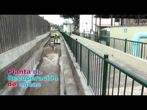 Parque Ecológico Voces por el Clima - Municipalidad de Santiago de Surco