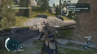 Assassin's Creed III - Flying Bobcat