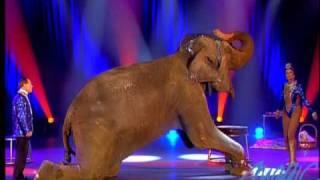 Kludski - elephante - LE PLUS GRAND CABARET DU MONDE