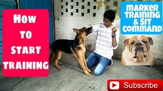 How to start training in Hindi | How to teach Sit command in Hindi | Marker Training |