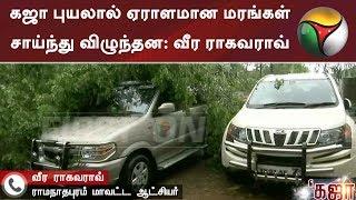 கஜா புயலால் ஏராளமான மரங்கள் சாய்ந்து விழுந்தன: வீர ராகவராவ் | #Rain #GayaCyclone #Weather