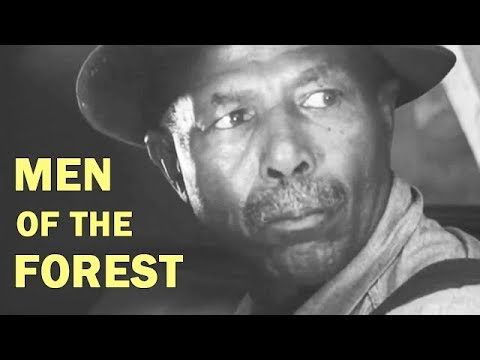 Logging in 1950s Georgia | Men of the Forest | Documentary Drama | 1952