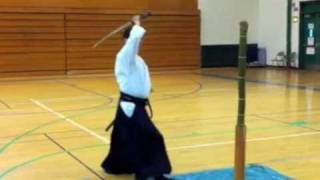 2011 Aikido and the Blade Highlights