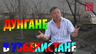 Дунгане Узбекистана