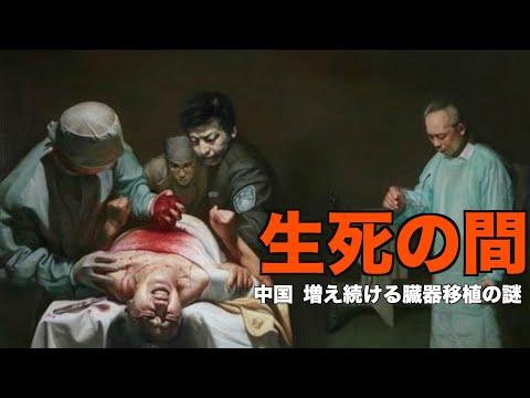 生死の間ー中国 増え続ける臓器移植の謎【世事関心】  臓器狩り   新唐人 中国情報