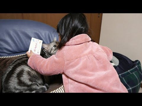 まじ天使♡姪っ子の娘と猫