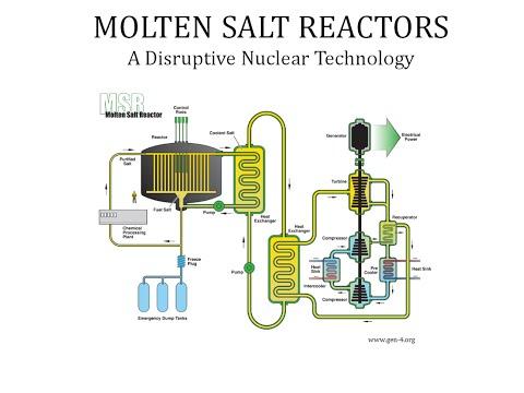 Molten Salt Reactors - A Disruptive Nuclear Technology
