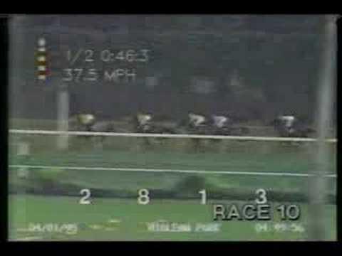 Pyramid Peak - 1995 Flamingo Stakes