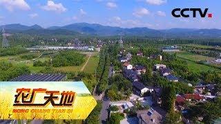 《农广天地》南国花海 魅力五四 20190408 | CCTV农业