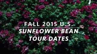 sunflower bean 2015 north american tour w diiv and no joy