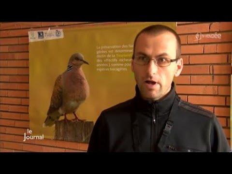 6e rencontre des naturalistes : Interview d'Olivier Lambert
