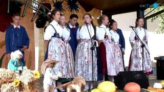 Gminny Festyn Dożynkowy w Krzęcinie