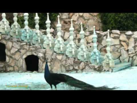 Сказочный замок -