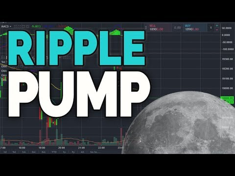 Ripple Pump & Live Stream!