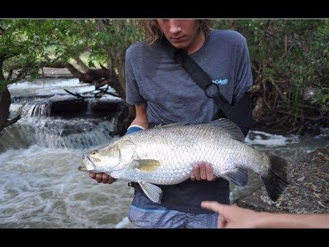 Exploring Darwin Creeks