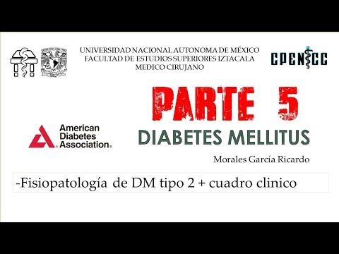 diabetes-mellitus-pte-5-fisiopatologia-dm-tipo-2-cuadro-clinico-||-clase-virtual-||-dr-garcia
