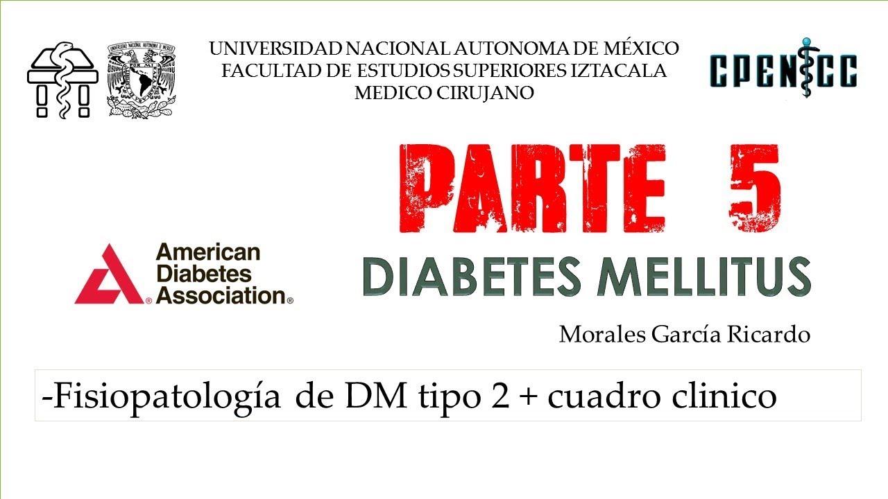 cuadro clinico diabetes mellitus 2 fisiologia