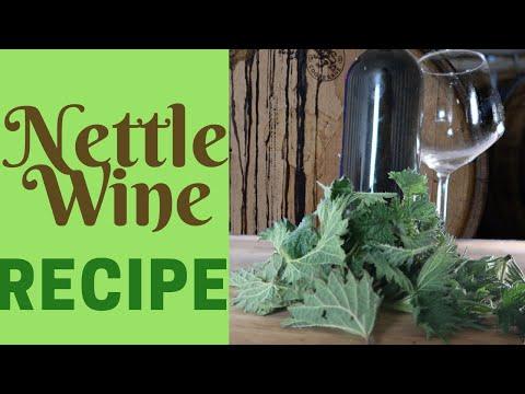 Nettle Wine Recipe: Classic Country Wine Homebrew