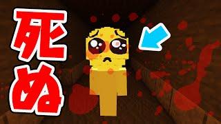【マイクラ】ぴえんのリアル鬼ごっこが完全にホラーゲームだったw(カラフルピーチ )
