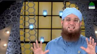 Hathi Walon Ka Kiya Anjaam Hua (Short Clip) Maulana Abdul Habib Attari