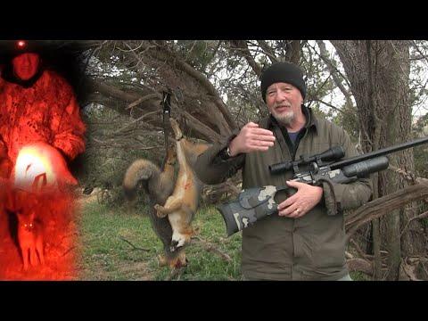 Airgun Hunting: An Introduction to Predator Hunting at Night