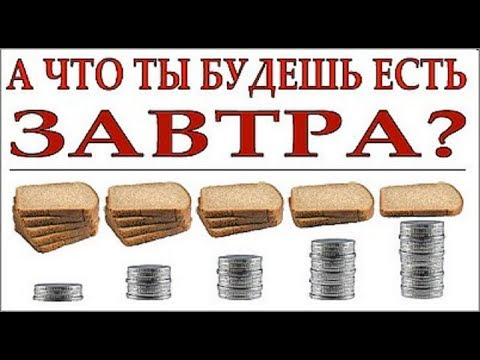 РУП «Белспецконтракт»: реализация автомобилей, техники