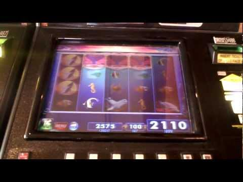 Slot bonus win on Whale Song at Parx Casino in Bensalem. PA