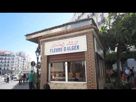 "Algiers | Street Scenes Around ""La Grande Poste"""