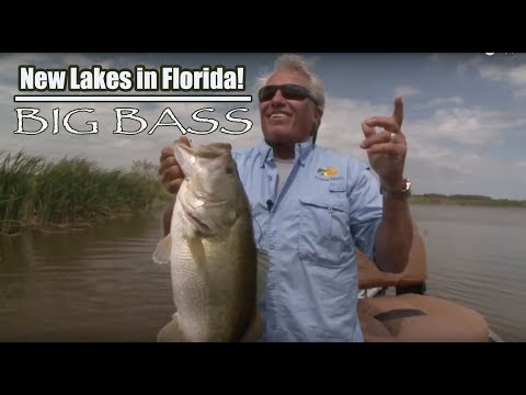 New Big Bass Lakes In Florida - Lakewood Ranch