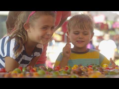 For anyone who wants a family holiday to remember  Brittany Ferries TV Ad 2018