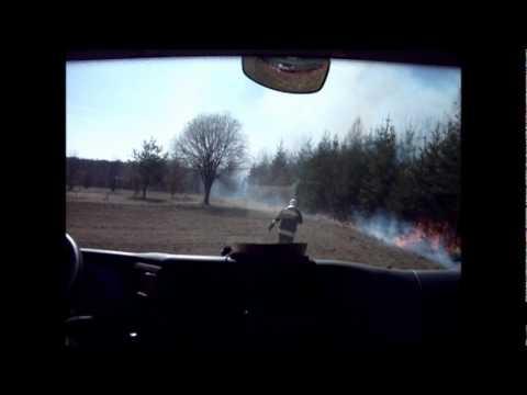 Fenyves és aljnövényzet égett Horvátzsidányban - 2012.03.15