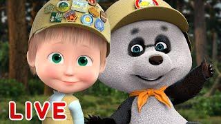 🔴 LIVE STREAM 🎬 Masha and the Bear 🐻 Bear's Favorite Cartoons 🥇