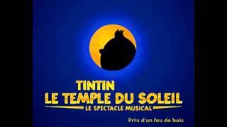 Tintin et le Temple du Soleil - Près d
