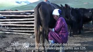 AVSF - L'élevage comme seule ressource en Mongolie