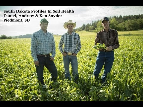 """Profiles In Soil Health: """"Feeding The Cattle Above & Below Ground"""" With Andrew Snyder"""