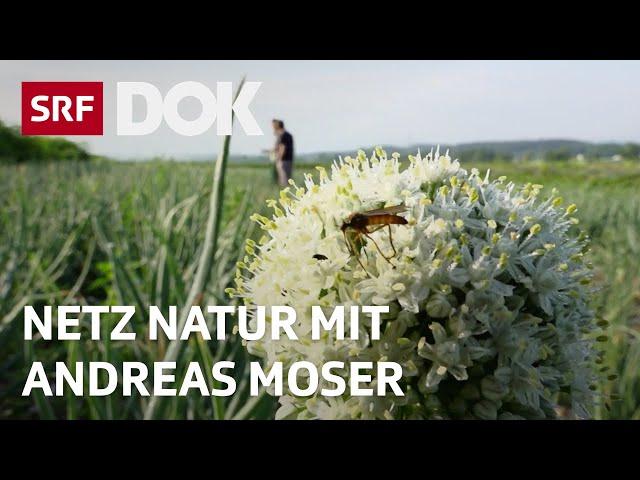 Landwirtschaft ohne Pestizide | NETZ NATUR mit Andreas Moser | Doku | SRF DOK