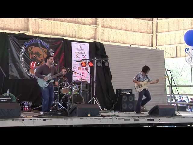Boxerstock Marietta GA 2014