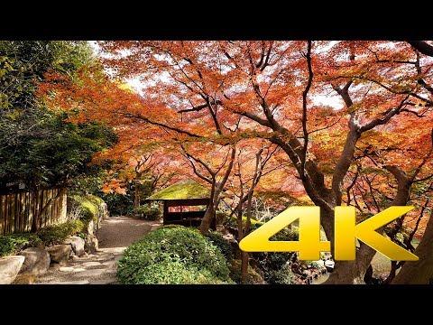 Happo-En Garden - Tokyo - 八芳園 - 4K Ultra HD