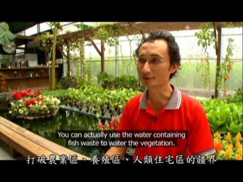 發現生態科技水水世界
