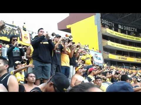 La Murga de la Sur - Vamos amarillo, vamos a ganar