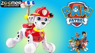 Pat Patrouille Marcus Robot Zoomer Paw Patrol Marshall Toy Review Patrulla de Cachorros Jouet