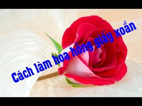 Cách làm hoa hồng đẹp mắt bằng giấy nhún - Đơn giản, dễ làm, hoa đẹp như hoa thật