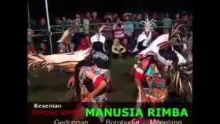 vuclip MANUSIA RIMBA...gedongan borobudur