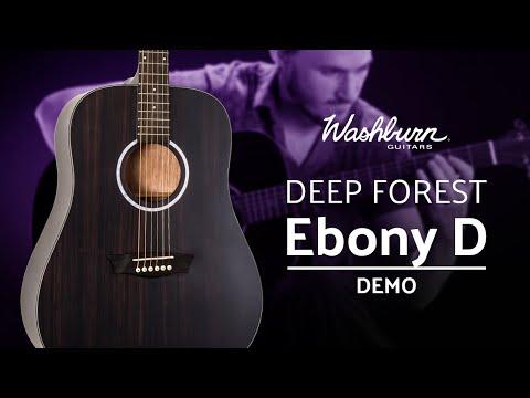Washburn Deep Forest Ebony D Demo
