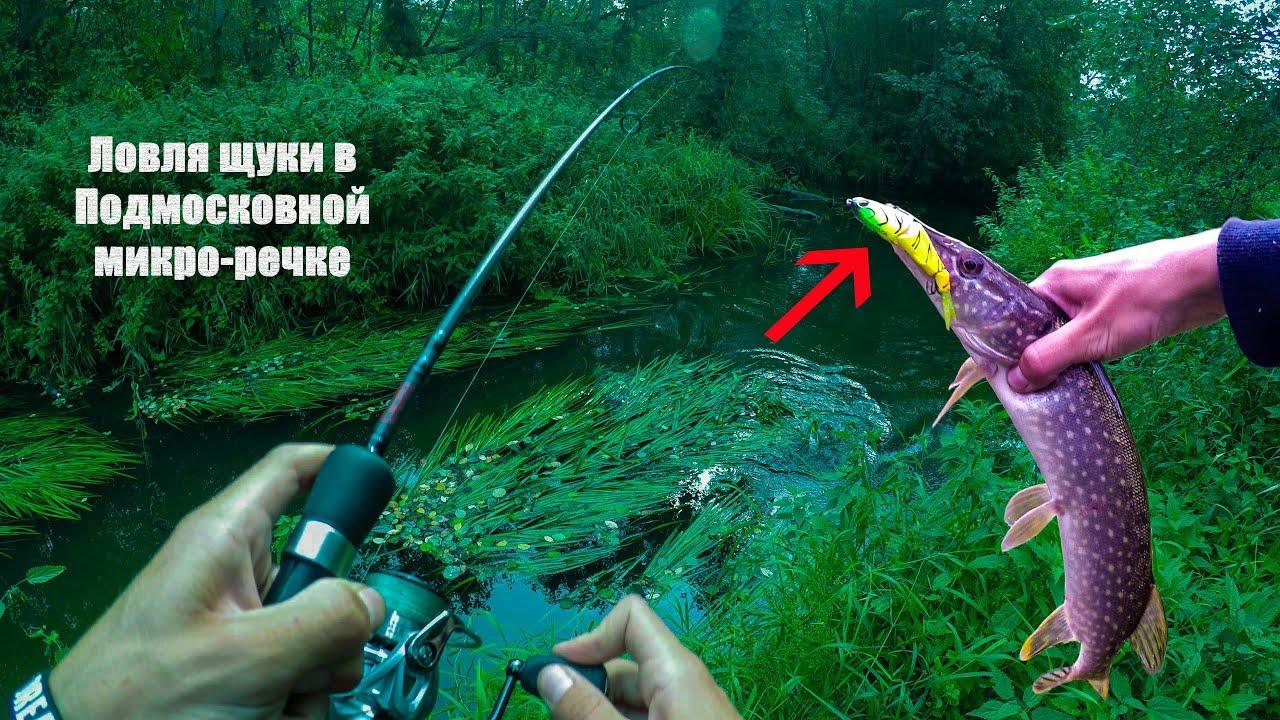 рыбалка на кружки на реке