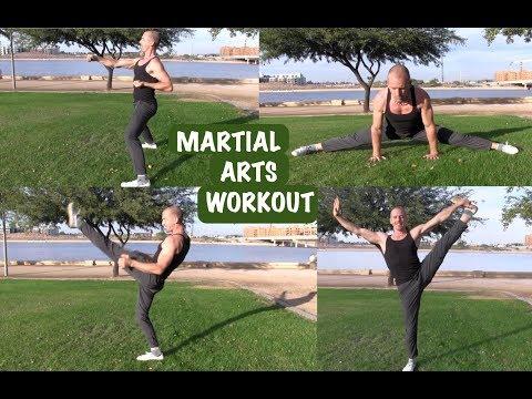 Martial Arts Fitness Training