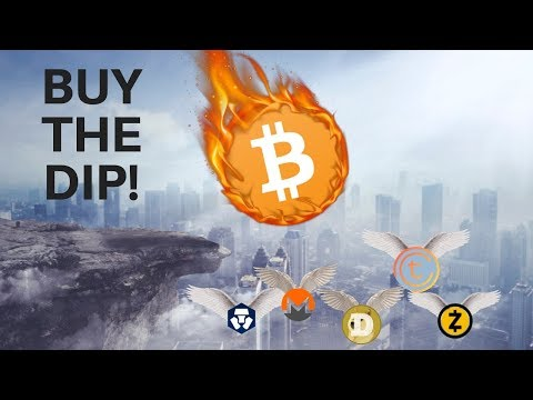 BUY THE DIP! Bitcoin PRICE Dives, Altcoins Rise! Where is BTC Price Going Next?