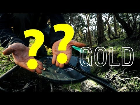 EP12   2019 A MUST Have Upgrade METAL DETECTOR Technology +