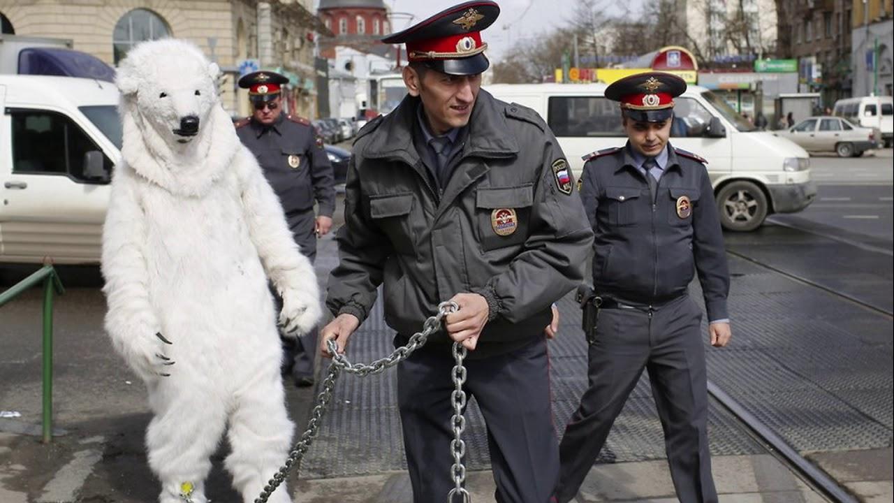 Смешные картинки полиция